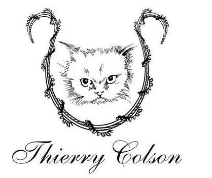 IMG_thierry_colson_logo-1